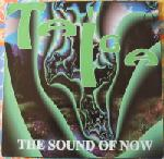 Taiga - The Sound Of Now